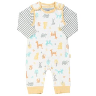 baby clothes rental dungaree and long sleeve body outfit