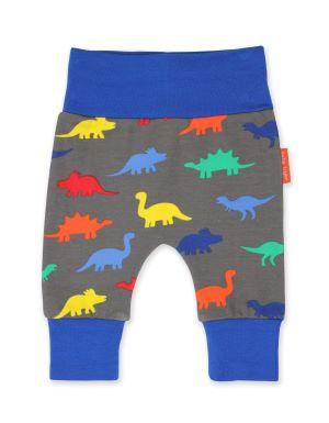 babywear rental dinosaur yoga pants