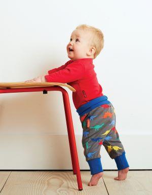 baby trousers dinosaur print organic yoga pants rental