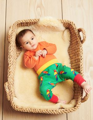 multi coloured parrot print babywear rental yoga pants
