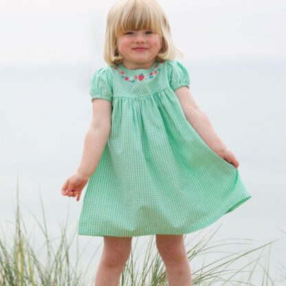 organic gingham dress babywear rental