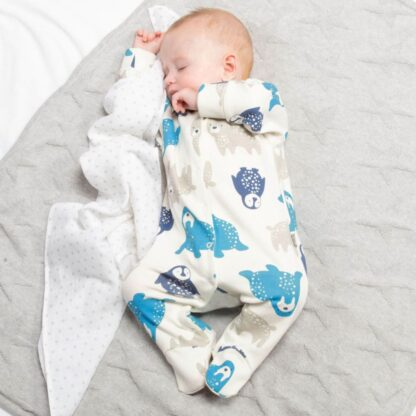 baby clothing rental sleepsuit with polar pals print