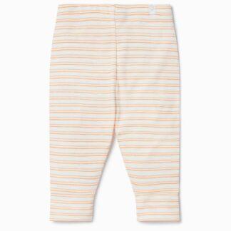 baby clothes for rent orange stripe unisex leggings