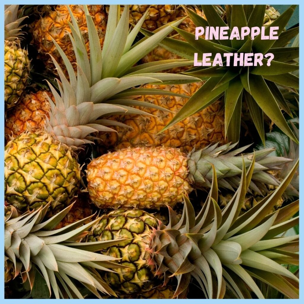 Pineapple used to produce designer baby clothing