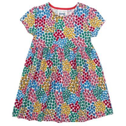multi colour printed ladybird baby dress