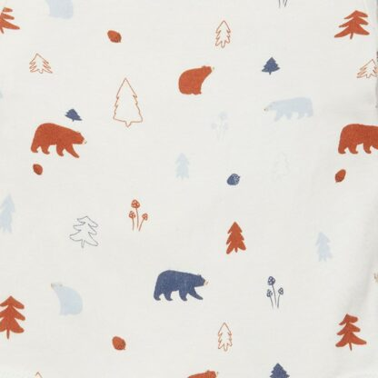 forest bear print